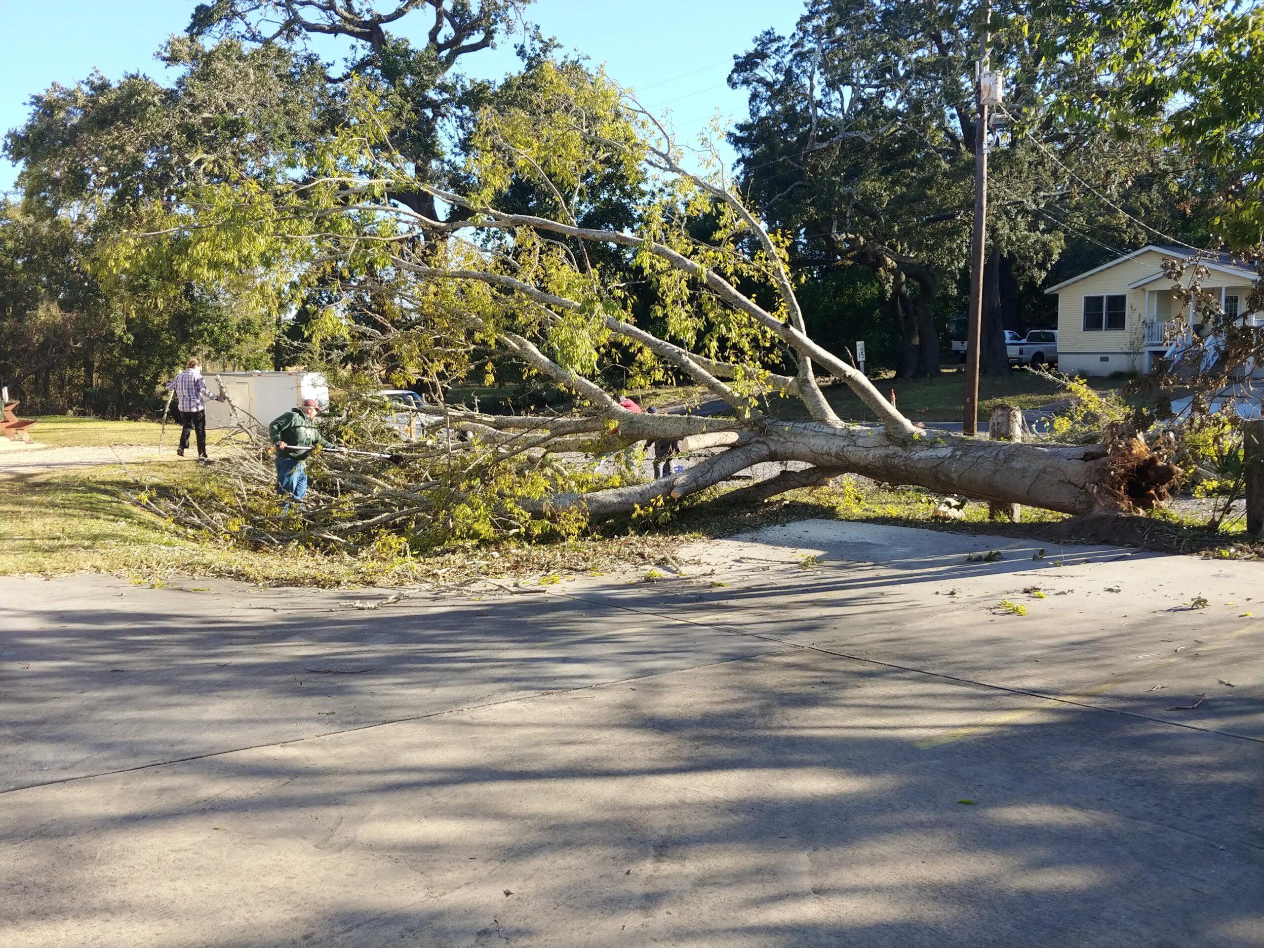 Back Bay Mission Open after Hurricane Zeta